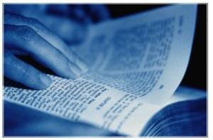 Brady-Bunch-Bible-blue1